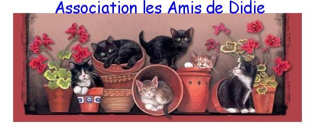 Association Les Amis de Didie