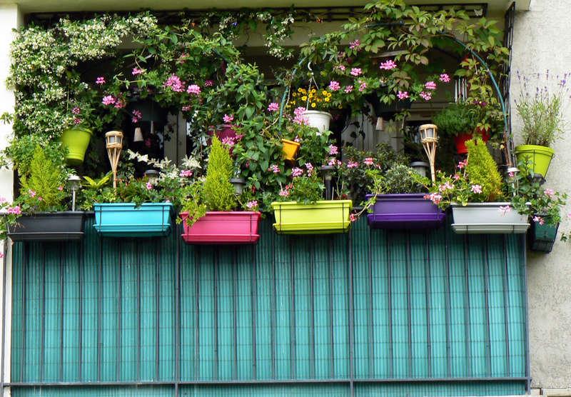 Balcons et terrasses fleuries page 42 - Terrasse et jardin fleuri paris ...