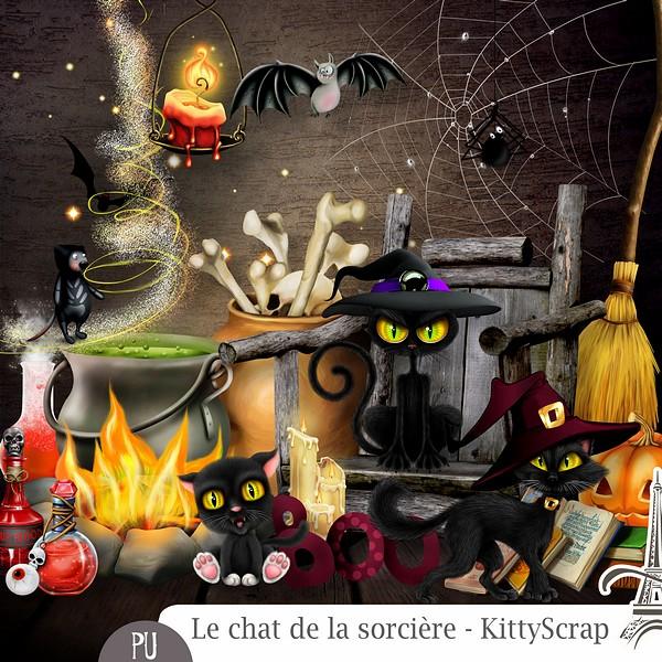 Le chat de la sorcière de Kittyscrap previe35