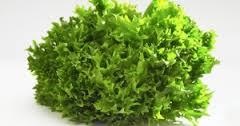 salade11.jpg