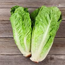 salade13.jpg