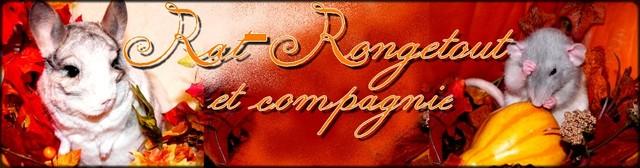 Rat Ronge-Tout & cie