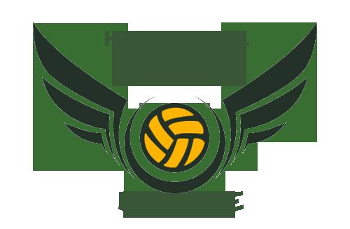 Haxball