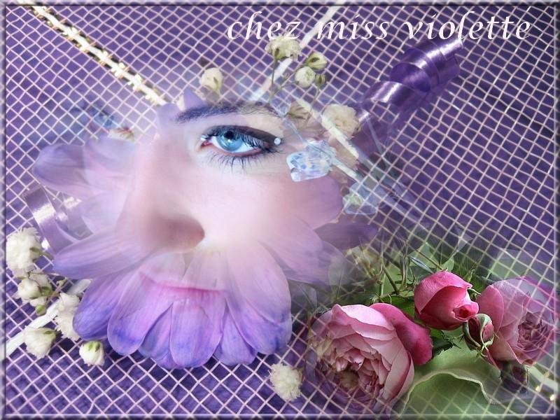 le  forum de miss violette