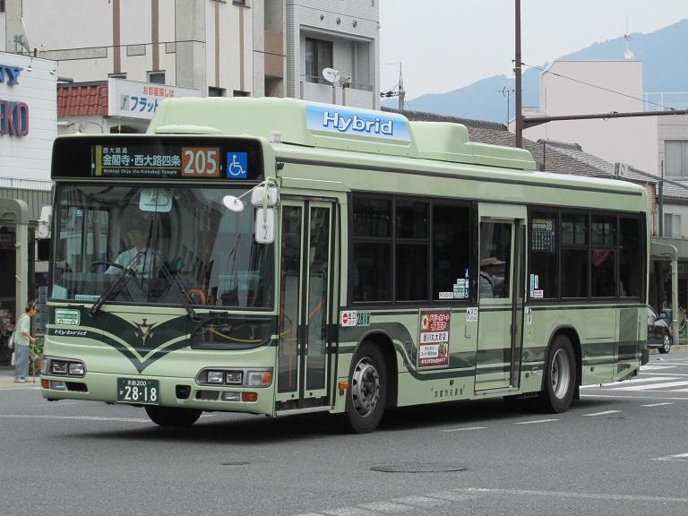 photo118.jpg
