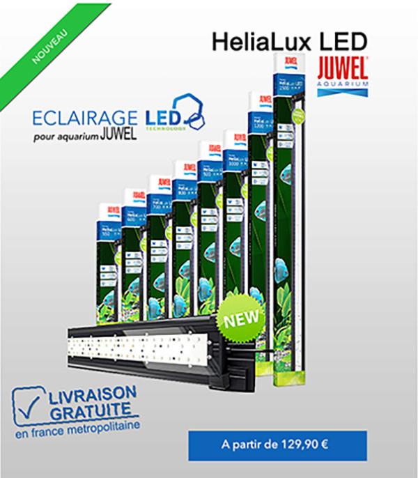 Rampes led helialux pour aquariums juwel for Site aquariophilie