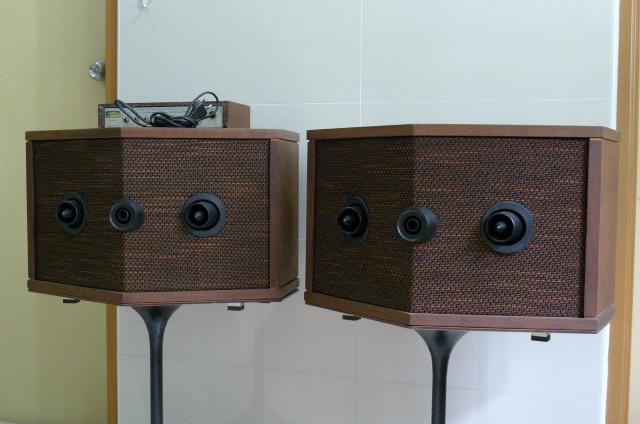 bose 901 series iv direct reflecting speaker system used. Black Bedroom Furniture Sets. Home Design Ideas