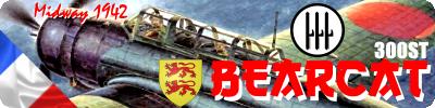 bearca12.png