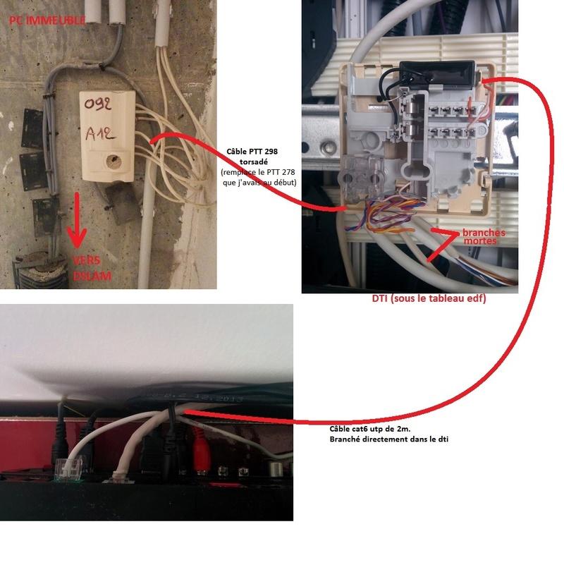 http://i97.servimg.com/u/f97/19/26/96/18/branch10.jpg
